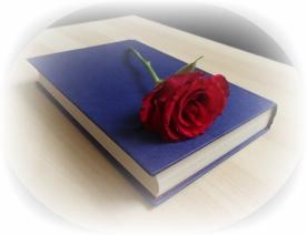 rose-2539951_1920
